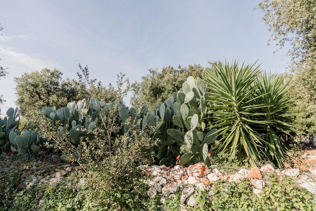 Puglia.AliciavanStuijvenbergFotografie-144